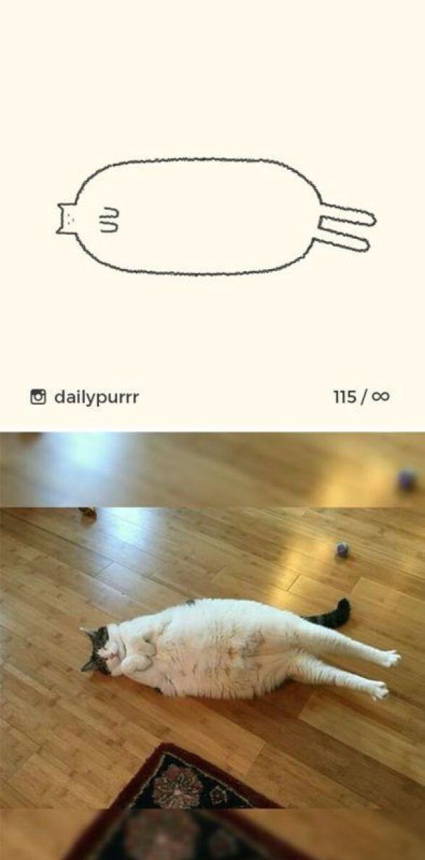 Immagini Stilizzate Delle Pose Più Divertenti Di Gatti Nei Disegni