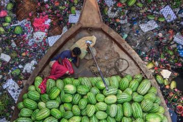 "Le  suggestive foto del concorso ""Environmental Photographer of the Year"" 2018"