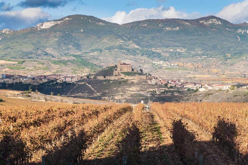 Wine Connoisseur S Tour Across La Rioja Amp Northern Spain