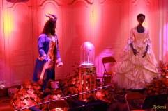 Belle et la bête - Le musical10