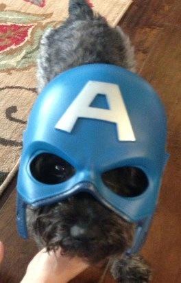 Captain AmeriWaff