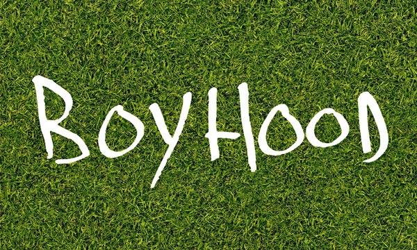 Boyhood critique1