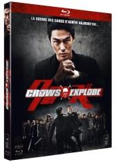 Crows Explode critique 8