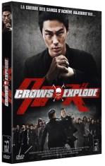 Crows Explode critique 9