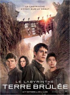 Le Labyrinthe-La terre Brulee