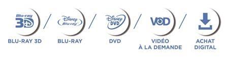 Disney-LOGO DVD versions