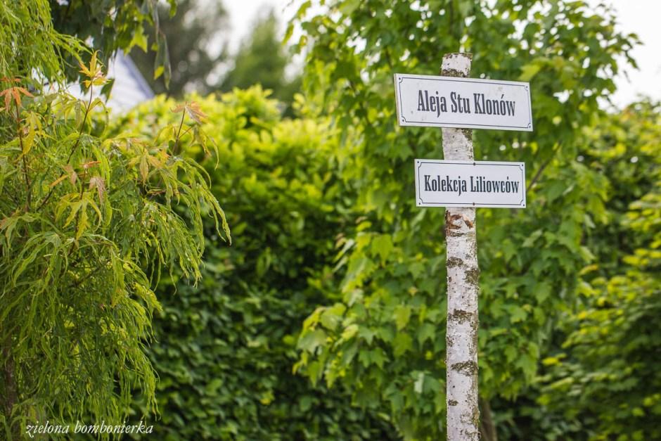 ogrody hortulus dobrzyca