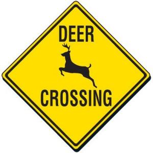 Traffic Signs RM213 lg 300x300 - Deer Season Makes Twin Tiers Roads More Dangerous This Fall, Says NY and PA Personal Injury Lawyer