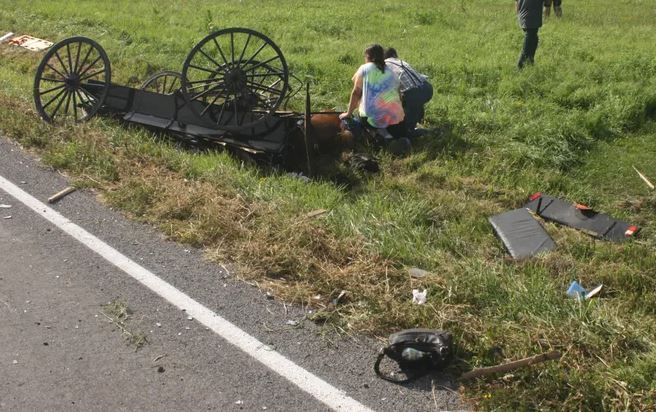 buggy photo - As Mennonite Family Fights To Recover, Driver In Yates County Horse-And-Buggy Crash Ticketed