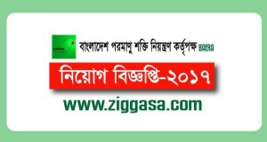 Bangladesh Atomic Energy Regulatory Authority Jobs