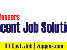 Recent Job Solution 2019 PDF