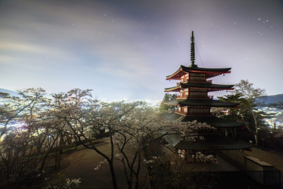 Night view with cherry blossoms at Chureito Pagoda, Fuji Lake Five Region
