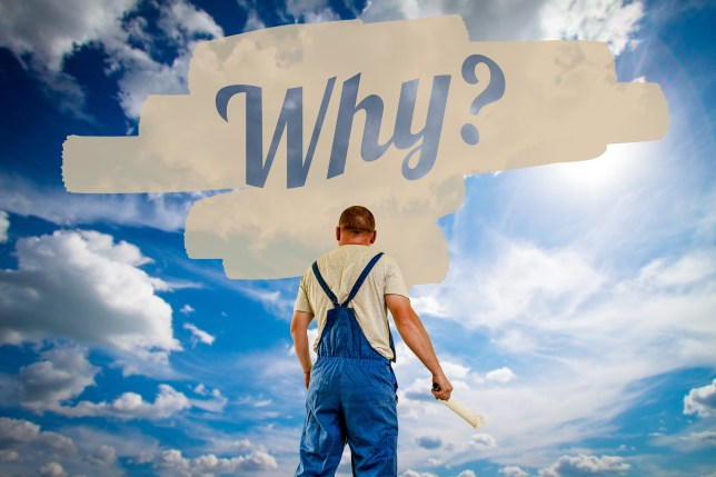 find your WHY Zilvold Coaching & Training