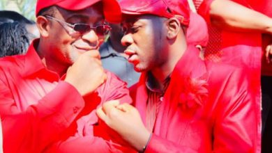 Photo of The MDC Alliance has reached a dead end: Analyst