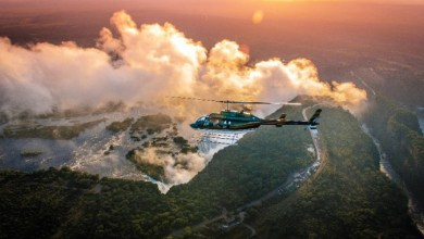 Photo of ZimParks aircraft disappears in Zambezi Valley with 3 on board