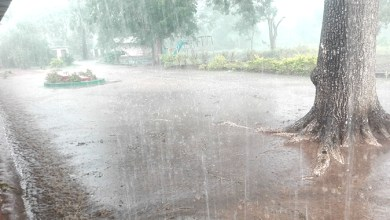 Photo of Heavy rains up to Saturday: Meteorological Department