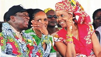 Photo of Grace Mugabe had total control over Mnangagwa, Mphoko, says Mudenda