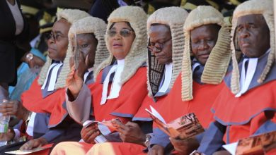 Photo of Beatrice Mtetwa 'absolutely certain' the judiciary is captured