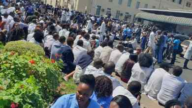 Photo of Over 100 Harare nurses resign over COVID-19 risk allowances