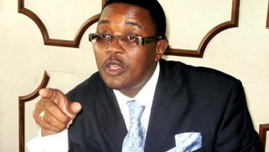 Photo of Mnangagwa comes third after Mujuru and myself: Walter Mzembi
