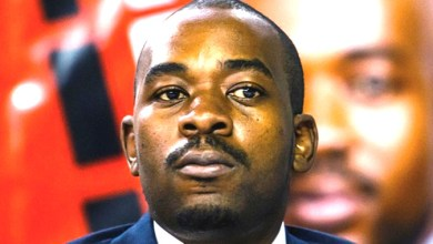 Photo of Chamisa resists Patriot Act: 'The love for country must not be legislated'
