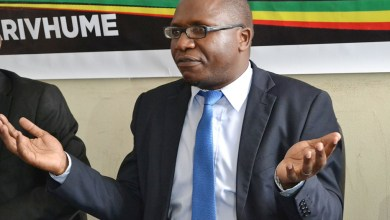 Photo of Jacob Ngarivhume says opposition will lose the 2023 elections