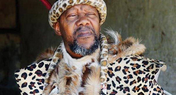Chief Ndiweni freed on $500 bail