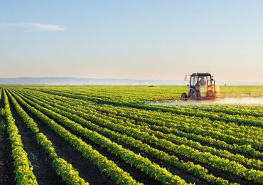 South Africans urged to vest in agriculture
