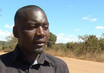 MDC-T Alliance activist Haruzivishe sentenced To 14 months In Jail