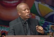 WINNIE DETRACTORS CRYING LOUDEST : MALEMA