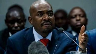 Photo of Nelson Chamisa: There is no revolution that won't succeed