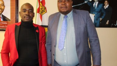 Photo of Dzamara told Chamisa that Sikhala is ready to die for Zimbabwe