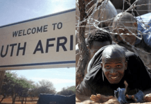 South Africa To Set Up 'welcome signs' At Border Fence To Welcome Illegal Immigrants