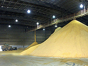 https://i1.wp.com/www.zimmcomm.biz/images/corn/distillers-grains.jpg