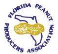 Florida Peanuts