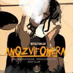 @buffalosouljah1- Anozvifonera lyrics and audio