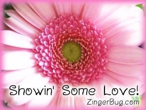 Another ShowinLove image: (showin_some_love_pink_flower) for MySpace from ZingerBug.com