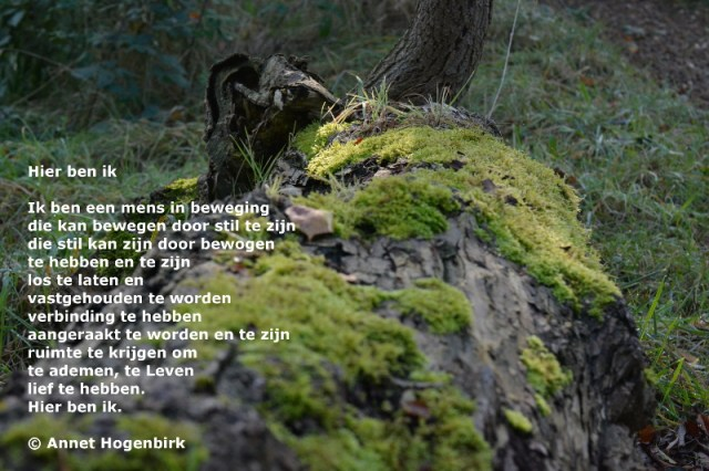 hier-ben-ik-gedicht-annet-hogenbirkmc