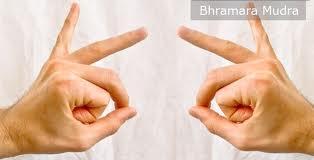 bhramara-mudra Peršalimo gydymas be vaistų!