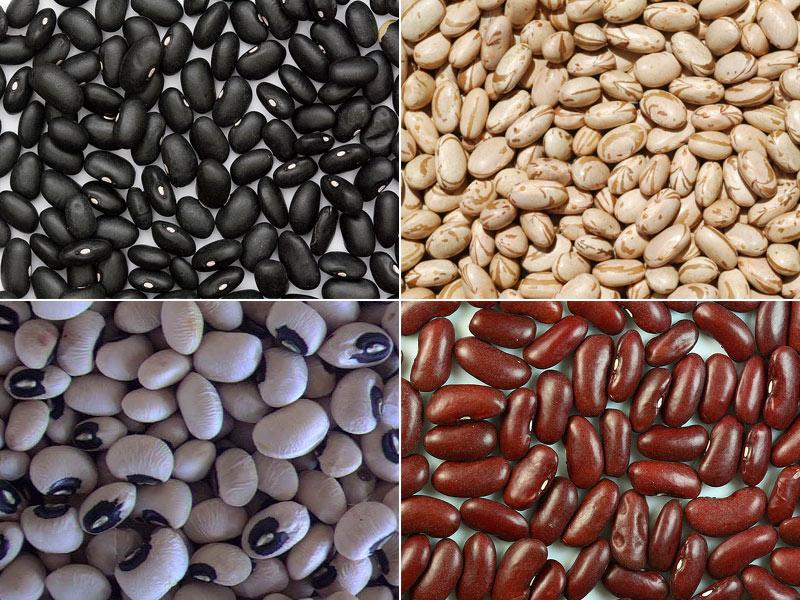 Pupeles Stebuklingas vertingiausių maisto produktų sąrašas. Ką valgyti sveikiausia?