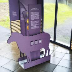 Glaubergmuseum – Zusatzausstellung