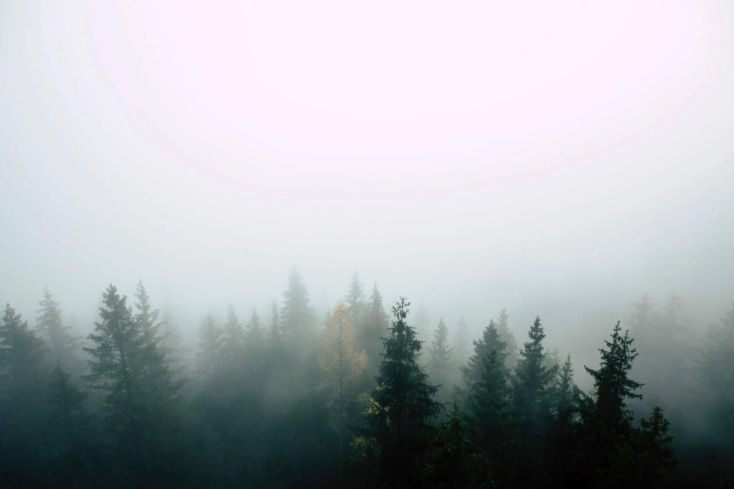 bird-s-eye-view-cold-daylight-1679718
