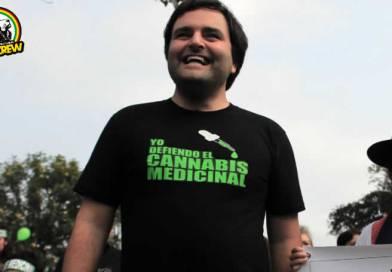 Cannabis medicinal en peligro