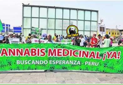 La Salud no espera : Cannabis Medicinal aún sin Reglamento en Perú
