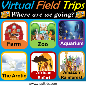 Virtual Field Trips - Set 1 ( Animals)