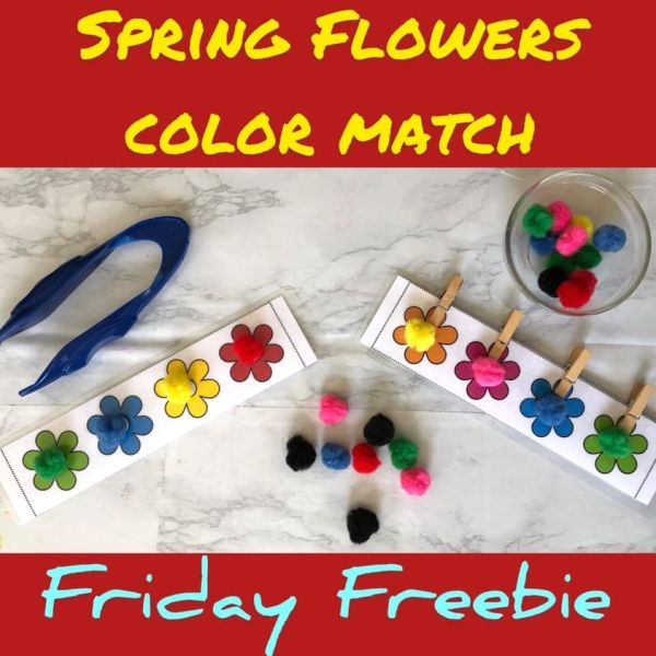 Spring Flower Match Pom Pom Activity Free