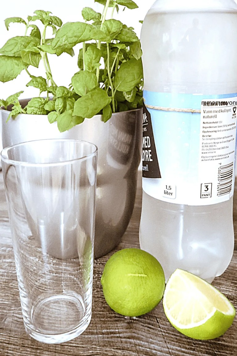 A bottle with sparkling water, a glass, 2 lemons, and mint plant