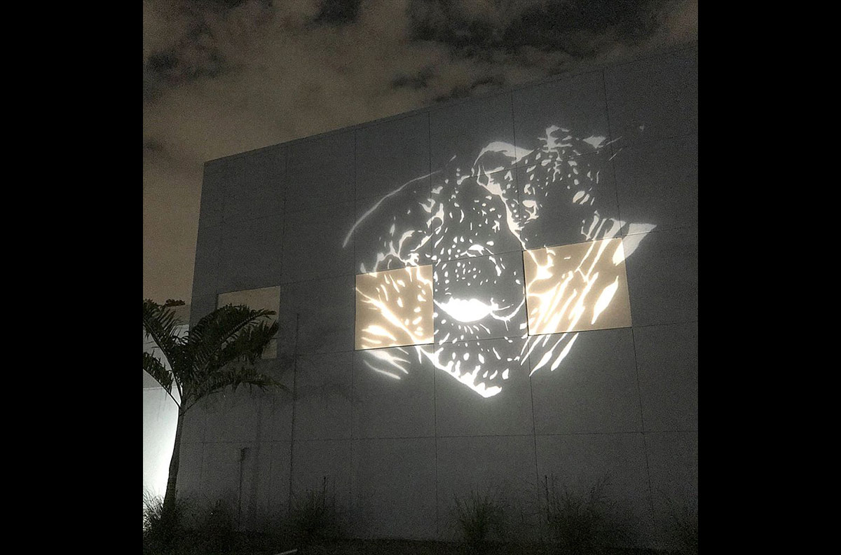 Liger Stencil Light Projection at the Alliance for the Arts