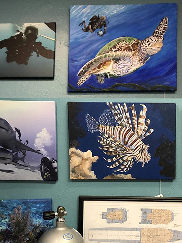 Artwork at Scuba Quest Cape Coral