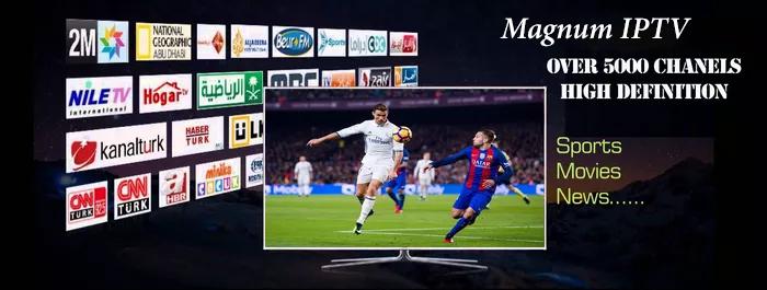 Serveur magnum OTT iptv HD 1080
